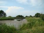 Pieczyskowa Rzeka , dolina Pilicy